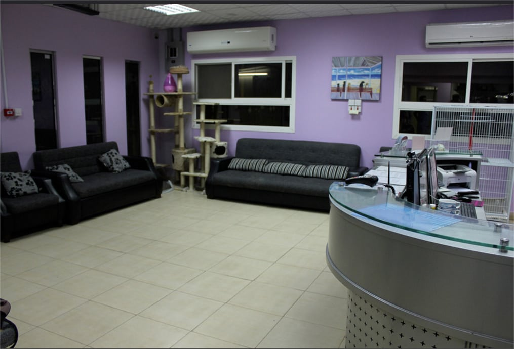 The Veterinary Surgery in Doha